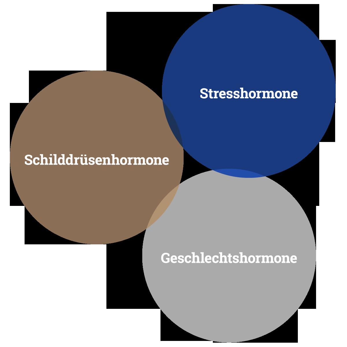 kPNI und Frauengesundheit: Vernetzung von Schilddrüsenhormonen, Stresshormonen und Geschlechtshormonen